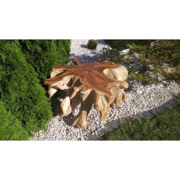Ława - korzeń teak