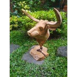 Sculpture, bull head made of Teak wood, 60cm